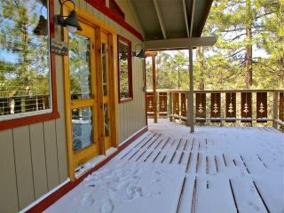 Inyo Tree House 3 bedroom w/steam bath - Tree View, Big Bear City