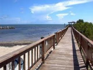 Our landmark boardwalk takes you out into the ocean while staying dry.