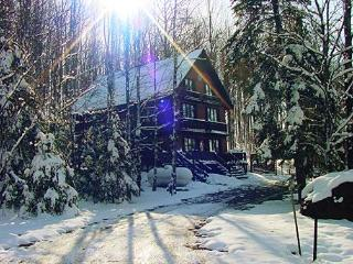 Nordic Haus chalet: ski-in/ski-out of Ski Brule, the jewel of the Yoop, Iron River