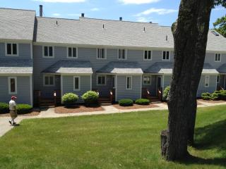 White Mountain Condo Near Attitash, Cranmore, Wildcat and Storyland