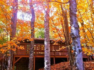 Front of Cabin in Fall