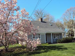 GREAT HOUSE w/BEACH PASS to CRAIGVILLE or COVELLS 109400, West Hyannisport