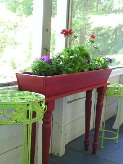 Summer Plants.