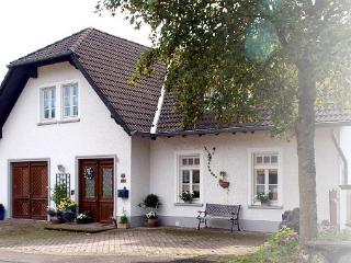 Vacation Apartment in Schalkenmehren - 753 sqft, unique, idyllic, modern (# 3394)