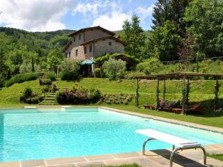 Lovely house near LUCCA/FLORENCE w/ beautiful view, Pescia