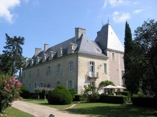 Chateau de Loire + Coach House Chateau rental in Loire valley - Rent this