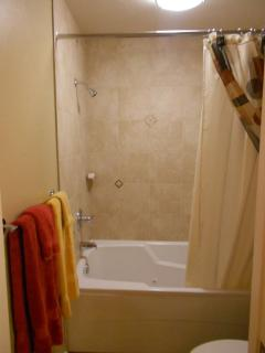 Master bathroom with jacuzzi tub and shower with tile surround.