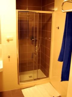 Shower space with shampoo and towels