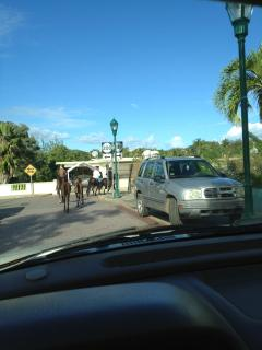 No drivers lisc. needed (how about those twin ponies)