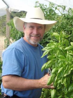 Ken and his Basil crop