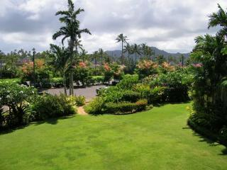 Your serene view from every room in Nani Moku