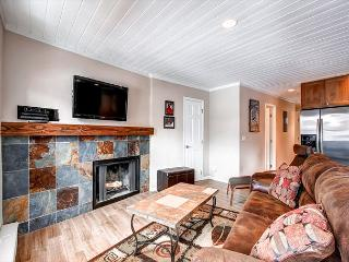 Panorama Alpine Living Room Breckenridge Vacation Condo Rentals