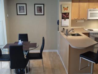 Furnished Condo in the Heart of Downtown Toronto