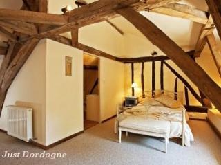 Luxury 4 bed Manor House - Ste Foy de la Grande