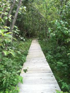 Boardwalk to the little lake.