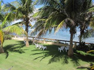 palm shaded lawns overlooking the ocean