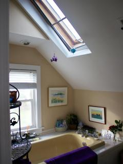 Master bedroom bath with skylight
