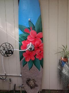 Hand painted hot outdoor shower