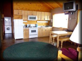 Caribou Cottage at Mt. Peale! - 3 bdrm, sleeps 6!, La Sal