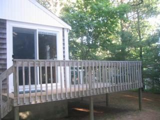 Cape Cod Pine Grove Cottage - 1/2 mile from beach!