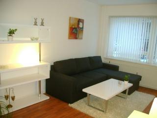 Nice studio apartment close to Faelledparken, Copenhague
