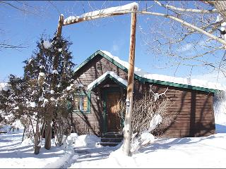 Pet Friendly Cabin with Private Hot Tub - Great Value for a Unique Property (11883), Steamboat Springs