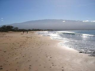 Maui Beach Resort #C-403, Panoramic Ocean View, Sleeps 3, Great Rates!!!, Kihei