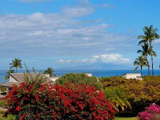 Wailea Ekolu 805 Deluxe 2Bd/2Ba, Ocean View Townhouse! Full A/C, Sleeps 4