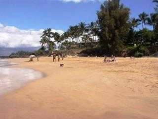 Island Surf #501 Panoramic Ocean View 2Bd/2Ba, Great Location!