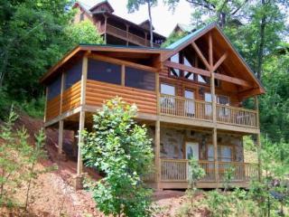 Bears Treehouse