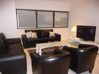 CITY CENTRAL PENTHOUSE, Adelaida