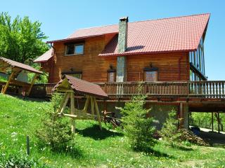 Carpathian Log Home