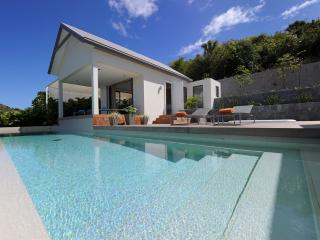 Arte at Flamands, St. Barth - Luxury Villa, Ocean View, Large Heated Pool and