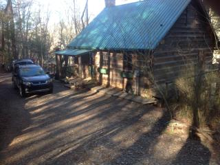 Cabin on White Water Toccoa River!, Blue Ridge