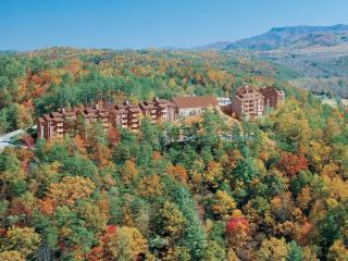 2 BR A101 Condo Mountain Views, Gatlinburg