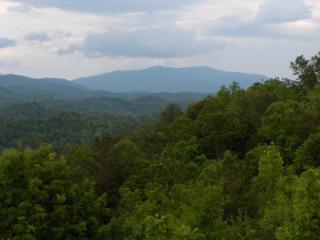 1 BR B102 Condo Mountain Views, Gatlinburg