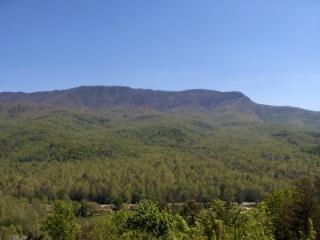 2 BR B104 Condo Mountain Views, Gatlinburg