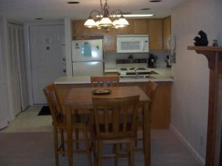 2 BR C106 Condo Recently Renovated, Gatlinburg