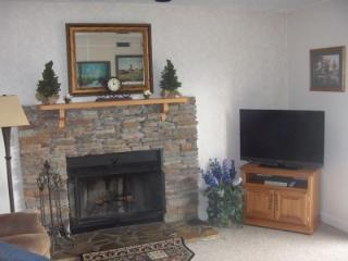 1 BR Condo Nicely Furnished C202, Gatlinburg