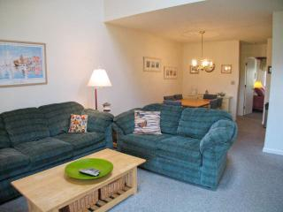 Ocean Edge Townhouse (sleeps 6) with A/C & WiFi - BI0503, Brewster