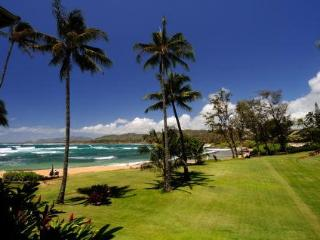 Free luau show for 2 with 4 nts Luxury is what you want. Oceanfront, GREAT VIEW