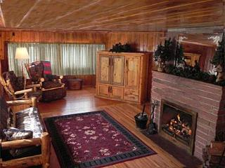 Spacious Living Room With wood-burning fireplace