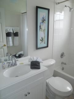 Sparkling Guest Bathroom