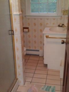Big House guest bathroom