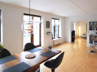 Stylish Copenhagen apartment near Christianshavn metro