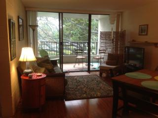 Oceanfront condo, swim with resident sea turtles!, Hilo