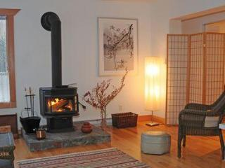Blazing wood stove