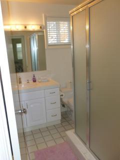 Downstairs hall bath, shower