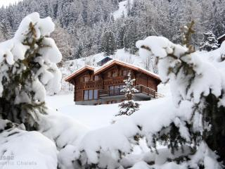 Chalet Altitude 1600 Ski-in-out, Hammam, Spa, Piano, BBQ, Nendaz