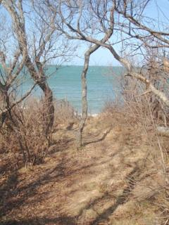 Short path to private beach access